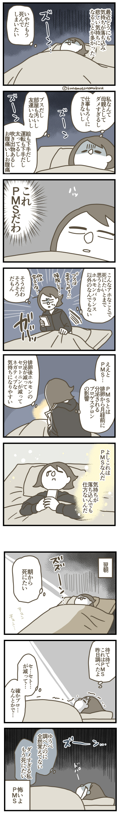 f:id:kanemotonomukuu:20170513235708j:plain