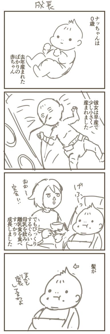 f:id:kanemotonomukuu:20170608130801j:plain