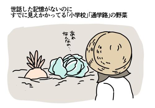 f:id:kanemotonomukuu:20170926171821j:plain