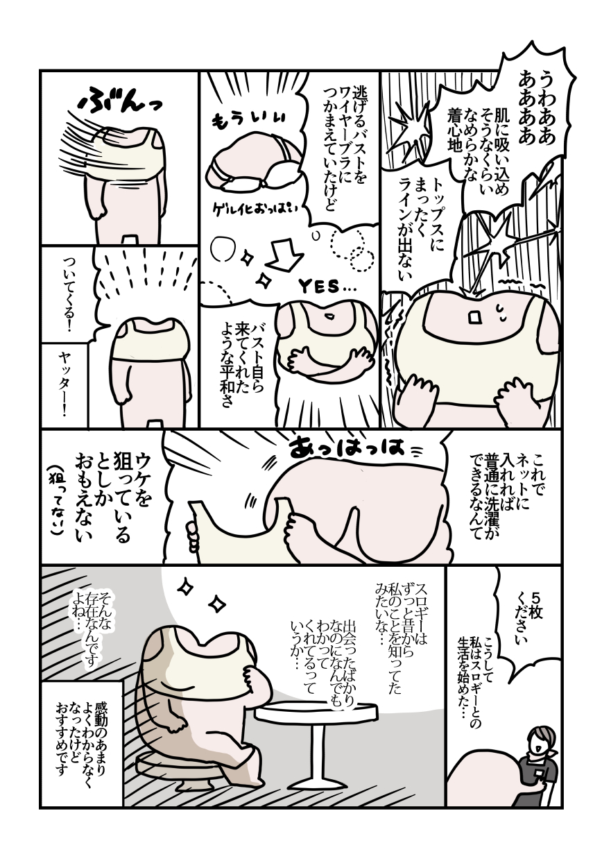 f:id:kanemotonomukuu:20180601204603j:plain