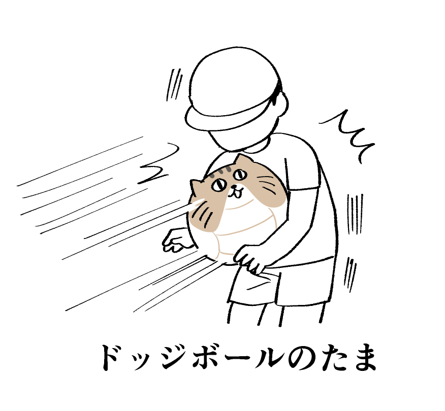 f:id:kanemotonomukuu:20190222110701j:plain