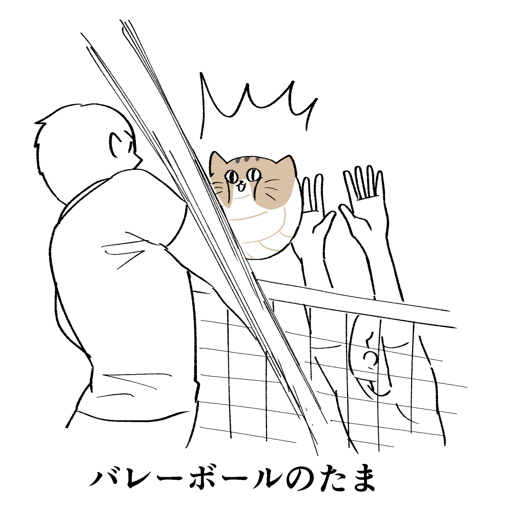 f:id:kanemotonomukuu:20190222110822j:plain