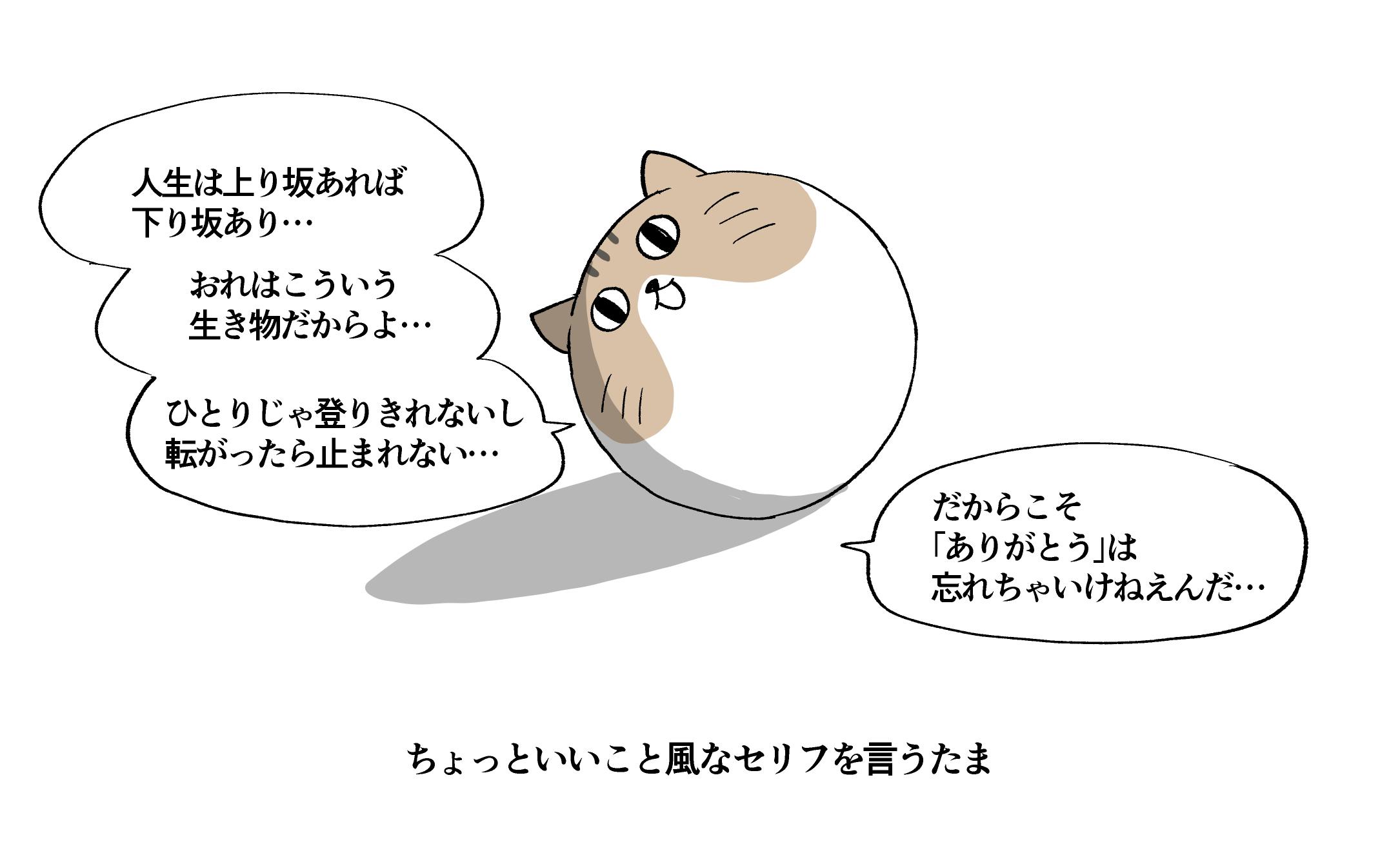 f:id:kanemotonomukuu:20190222110924j:plain
