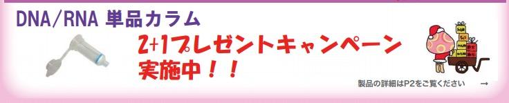 f:id:kanenashi_kenkyu:20180602121841j:plain