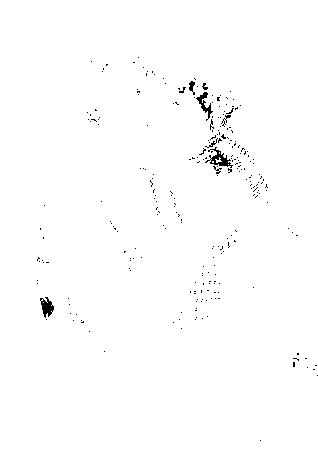 f:id:kangokyu:20170320101032p:plain