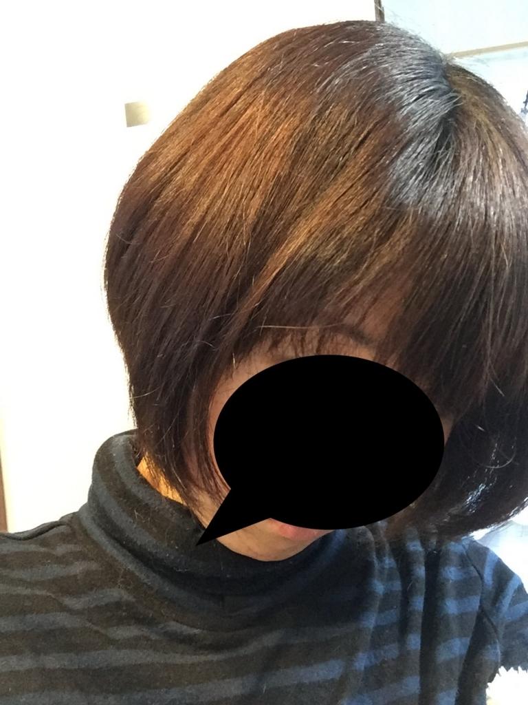f:id:kangokyu:20180322170754j:plain
