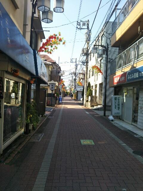 f:id:kanibeam_com:20161106123818j:image