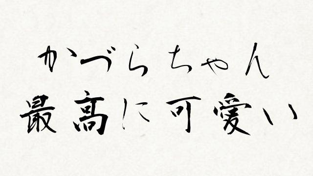 f:id:kanikama28:20170101233529j:plain