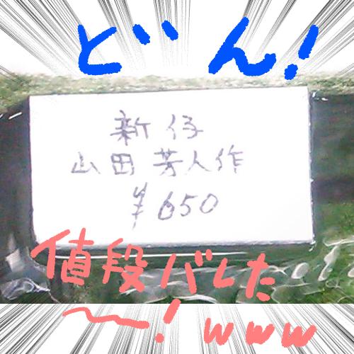 f:id:kanikanikaniyo:20161121161813p:plain