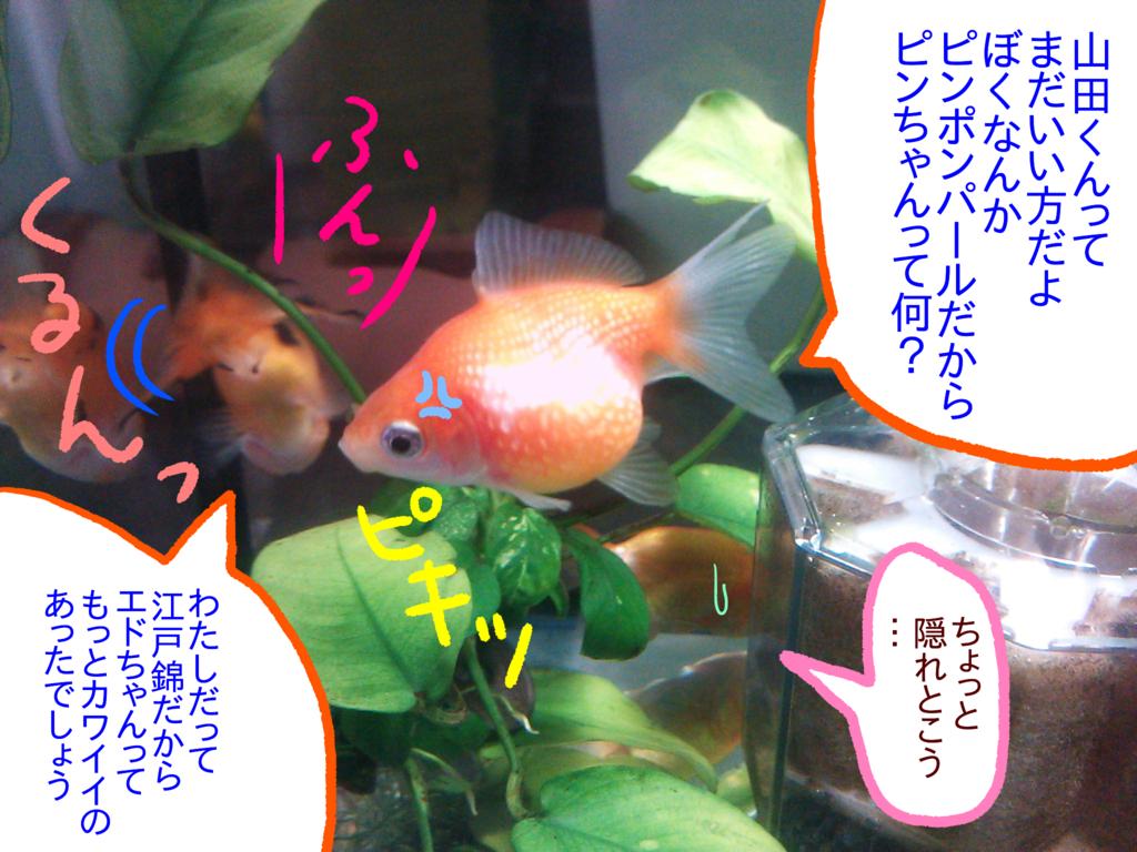 f:id:kanikanikaniyo:20161121161943p:plain