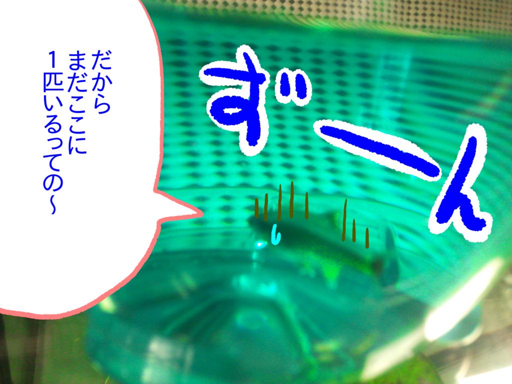 f:id:kanikanikaniyo:20161121162116p:plain