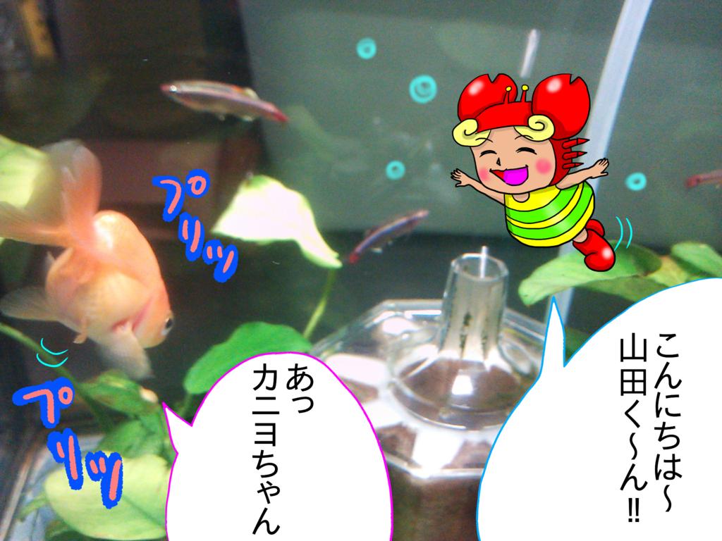 f:id:kanikanikaniyo:20161126161112p:plain