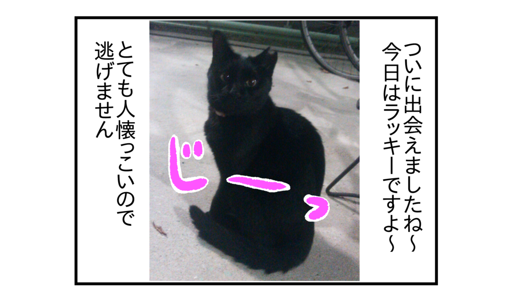 f:id:kanikanikaniyo:20161204043010p:plain