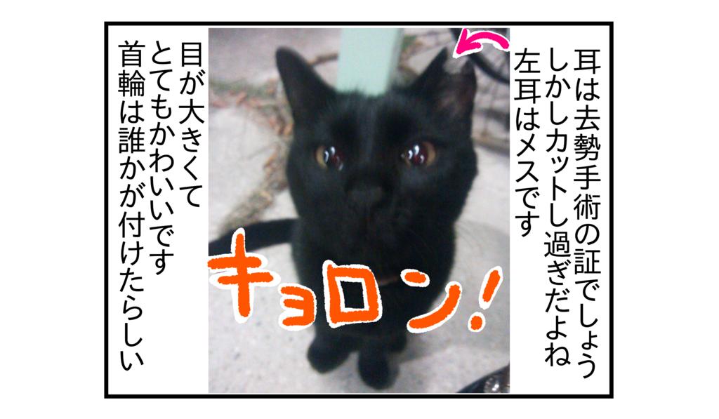 f:id:kanikanikaniyo:20161204043041p:plain