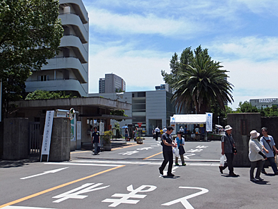 f:id:kanishika:20130721181623j:image