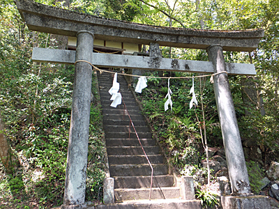 f:id:kanishika:20140524091503j:image