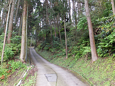 f:id:kanishika:20140528081917j:image