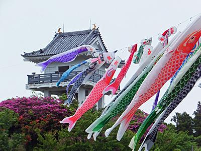 f:id:kanishika:20140528082536j:image