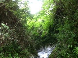 f:id:kaniusagi:20120623124018j:image