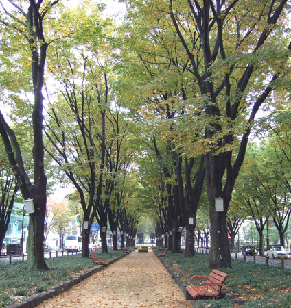 f:id:kanjisin:20061111014653j:image