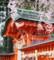 仙台榴岡天満宮の桜