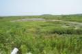 小高の浜120730