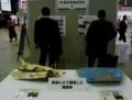 東日本大震災と戦う 仙台駅1211
