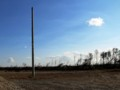 「螺旋海岸」の今2012.11,18