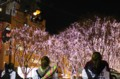 仙台 光のページェント2012