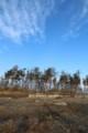 北釜2012.3.31