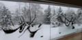 真冬の地底の森ミュージアム