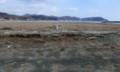 根浜海岸2013.2.10