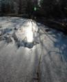 氷河期の森の朝2013.2.21