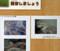 ハルイチ─地底の森ミュージアム