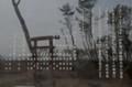 荒浜慈聖観音2013.3