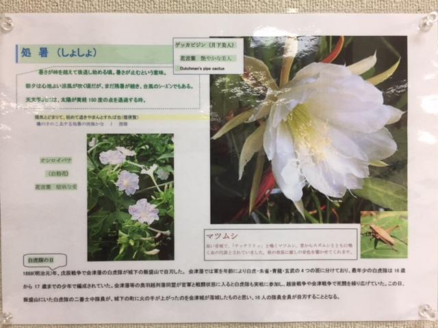 f:id:kanjuku-komae:20180823164049j:plain