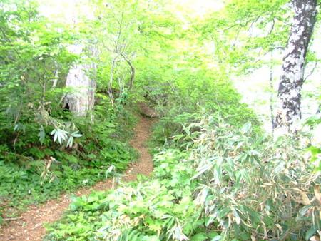 f:id:kanjuku107:20080613111521j:image