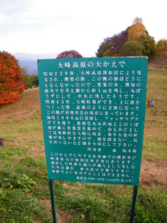 f:id:kanjuku107:20091021151514j:image