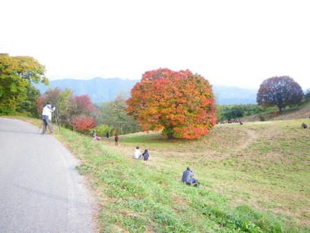 f:id:kanjuku107:20091021151518j:image