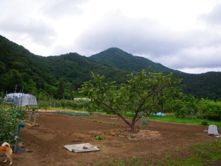 f:id:kanjuku107:20110617062634j:image