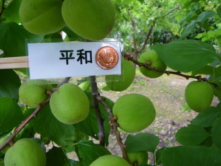 f:id:kanjuku107:20110617153151j:image