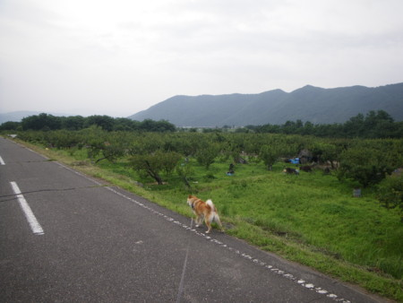 f:id:kanjuku107:20110702180914j:image