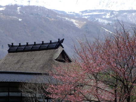 f:id:kanjuku107:20120430223907j:image