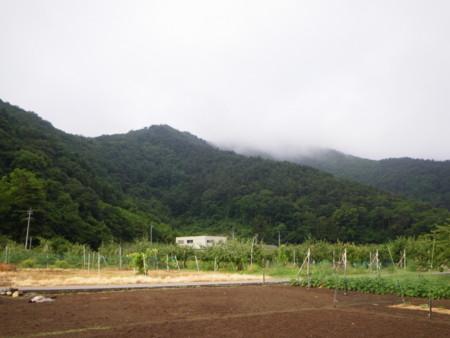 f:id:kanjuku107:20120704092821j:image