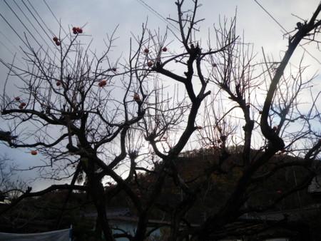 f:id:kanjuku107:20171121210745j:image:w640