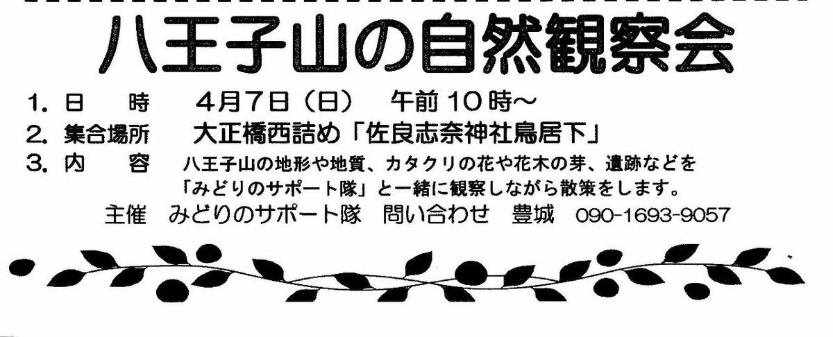 f:id:kanjuku107:20190329181216j:plain