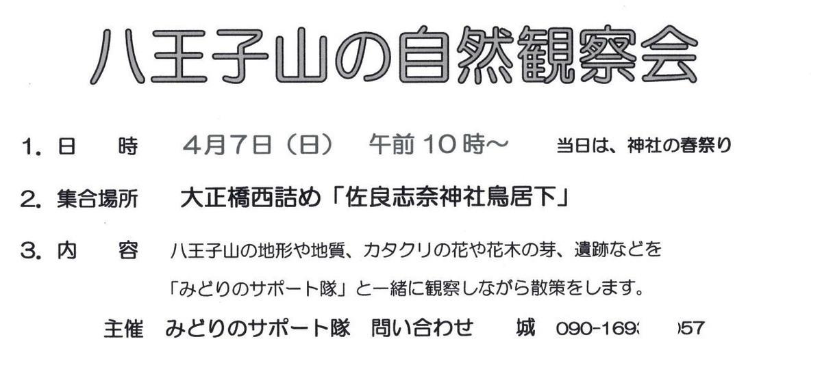 f:id:kanjuku107:20190406213301j:plain