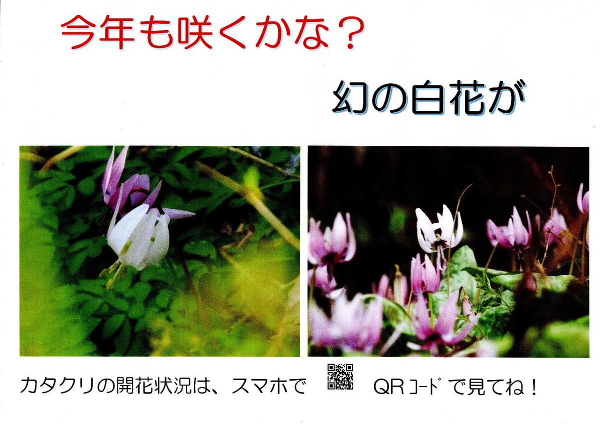 f:id:kanjuku107:20200206174858j:plain