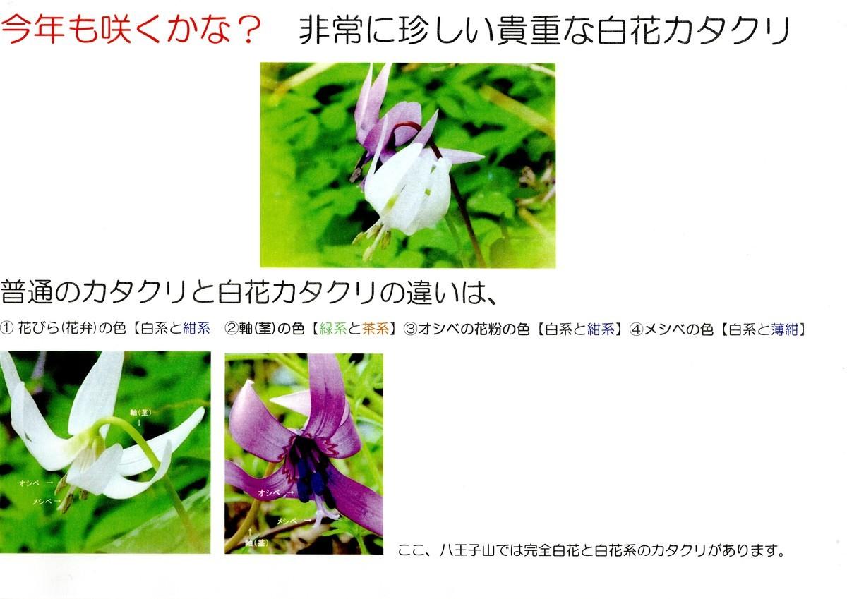 f:id:kanjuku107:20210213212741j:plain