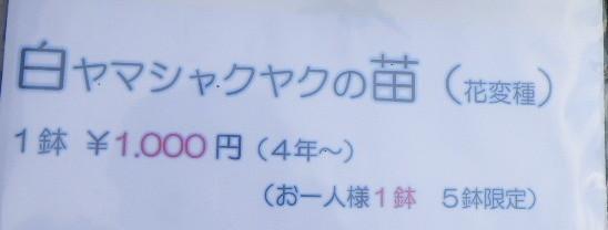 f:id:kanjuku107:20210404214250j:plain